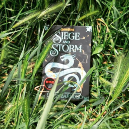 Book Review: Siege and Storm by Leigh Bardugo